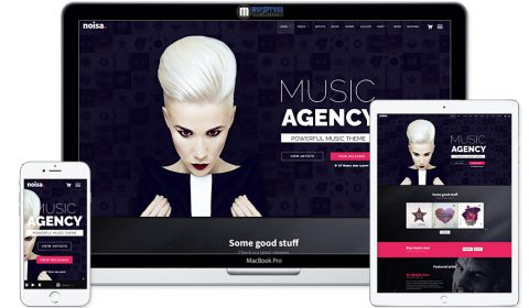 Noisa - WordPress Music & Events Theme