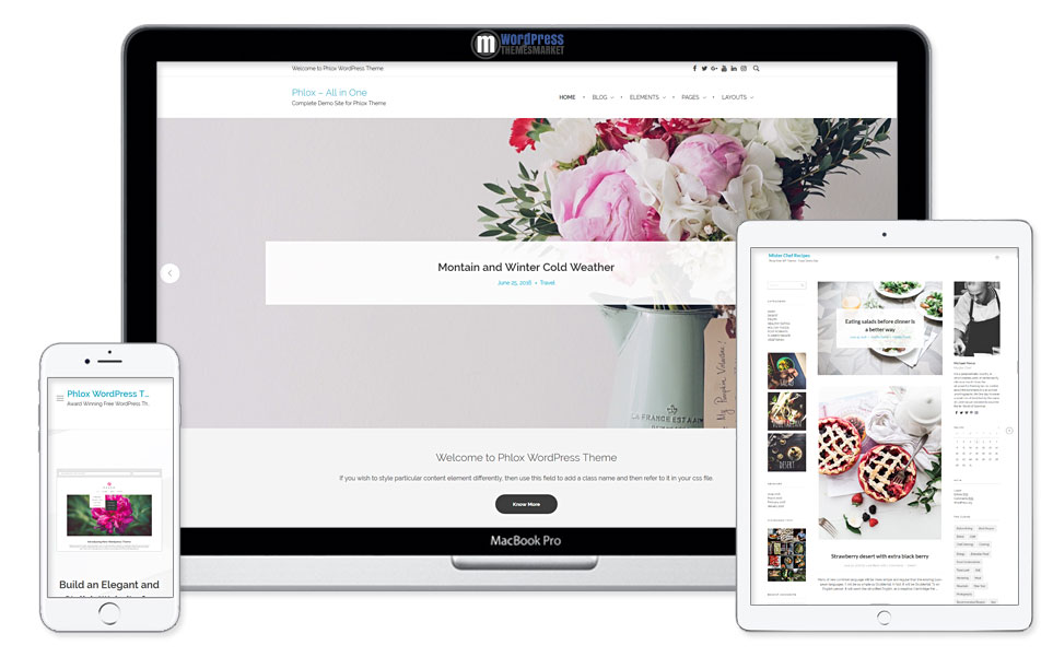 Phlox Free WordPress Theme